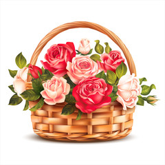 Fototapeta Róże Basket with roses isolated on white. Vector illustration.