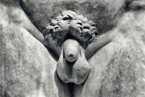 Vintage image of penis Fotobehang