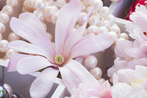 Foto-Tapete - tree  flowers with pearls and lace (von neirfy)