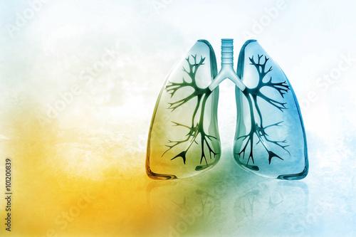 Obraz Human lungs - fototapety do salonu