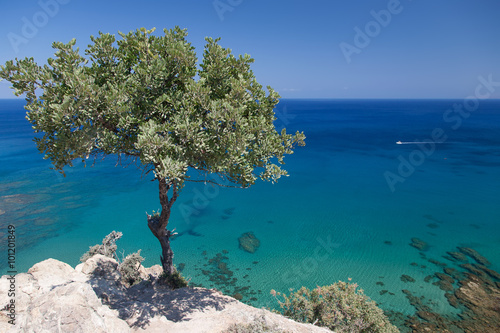 Photo sur Toile Chypre Cyprus Island sea coast