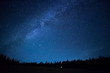Leinwanddruck Bild - Blue dark night sky with many stars above field of trees. Milkyw