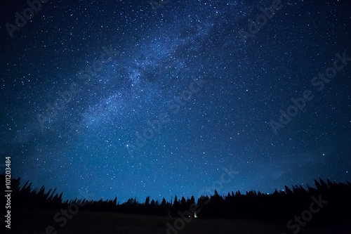 Photo Stands Night Blue dark night sky with many stars above field of trees. Milkyw