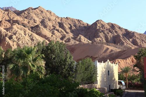 Foto op Plexiglas Cyprus Mosque in the desert