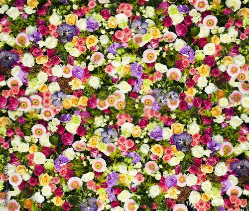 Photo  fondo de flores variadas
