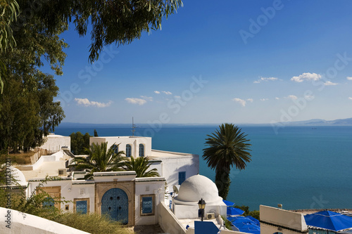In de dag Tunesië Tunisia. Sidi Bou Said - typical building with white walls, blue doors and windows