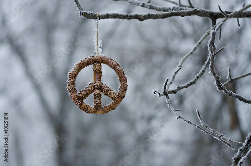 Foto  Frozen Peace Sign Hanging Alone in the Winter Forest