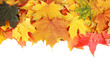 Frame of autumn maple leaves with copy space on white background