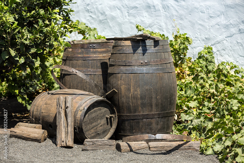 Wine barrels on background wall , Lanzarote; Canary islands.