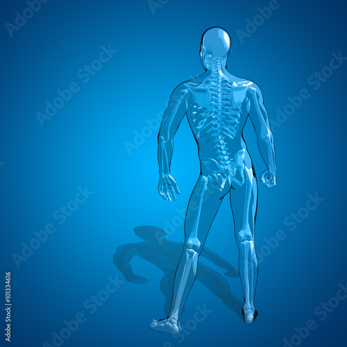 Concept Or Conceptual 3d Human Man Skeleton Anatomy Buy This Stock
