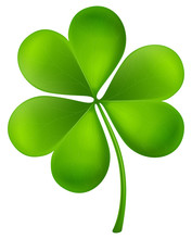 Detailed Realistic Vector Illustration Of A Shamrock. St. Patrick's Day Design Element.
