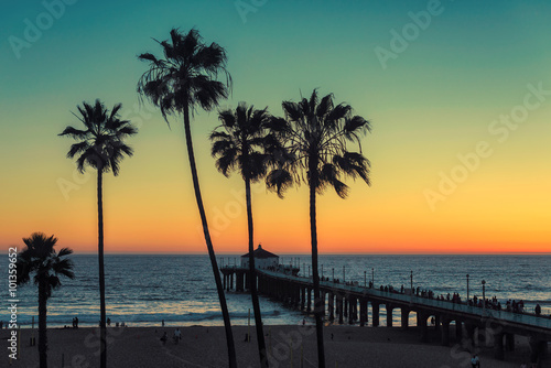 Photo  Palm trees at Manhattan Beach