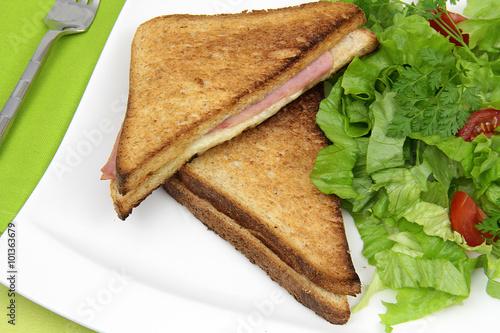 Fotografie, Obraz  sandwich club 29012016