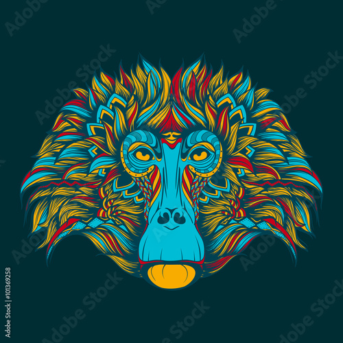 Colorful baboon monkey face doodle Canvas Print