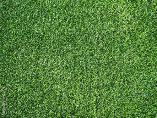 Montage in der Fensternische Gras Green grass for background