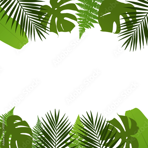 Tropical Leaves Background With Palm Fern Monstera And Banana Leaves Vector Illustration Buy This Stock Vector And Explore Similar Vectors At Adobe Stock Adobe Stock Autumn leaves, leaves background, maple leaves. banana leaves vector illustration