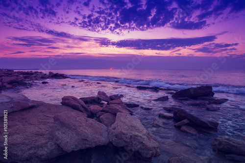 Photo sur Toile Prune Wild rocky beach at dawn