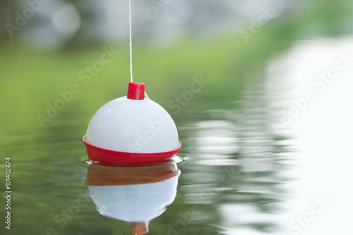 Fotografie, Obraz Bobber floating in water with ripples