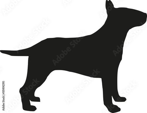 Bullterrier-Silhouette Fototapete