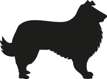 Dog Collie Silhouette