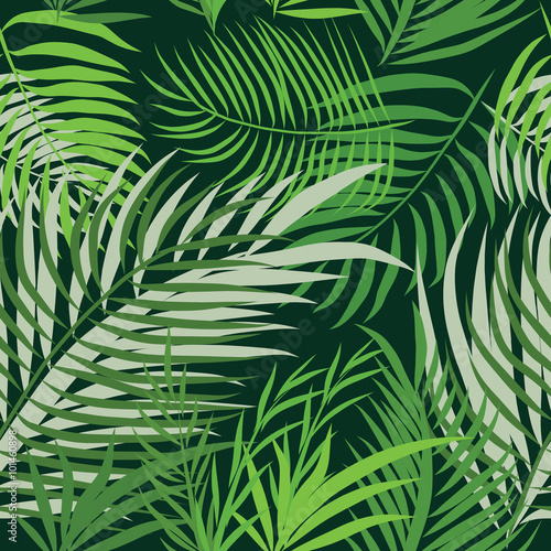 Ingelijste posters Tropische Bladeren Seamless pattern leaves of palm tree.