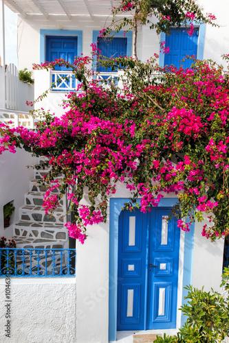 Obraz w ramie Traditional greek house with flowers in Oia village on Santorini island, Greece