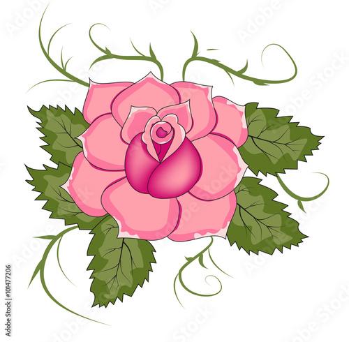 A Pink Rose Vector Isolated On White Una Rosa Vettoriale Isolata Su