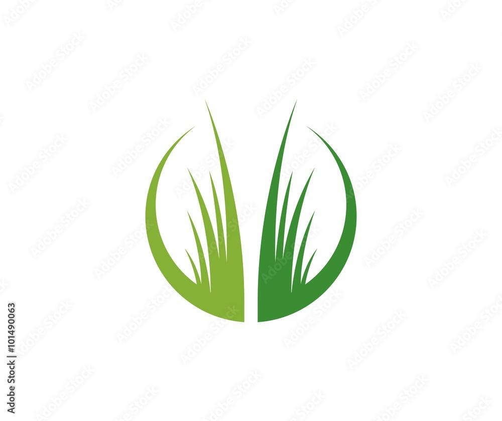 Fototapety, obrazy: Grass logo