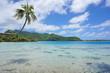 Coconut tree over lagoon Huahine French Polynesia
