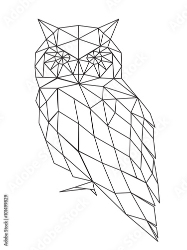 Canvas Prints Owls cartoon poligonal owl silhouette.