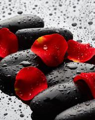 Fototapeta Kamienie Stones with rose petals