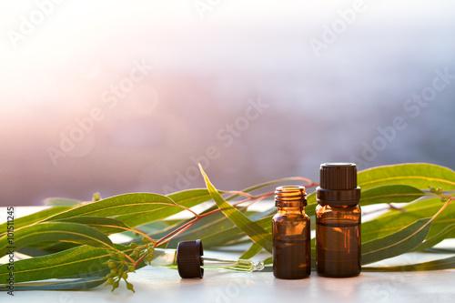 Fotografie, Obraz  Eucalyptus aromatherapy essential oils in bottles