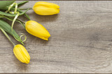 Fototapeta Kwiaty - Żółte tulipany na drewnianych deskach