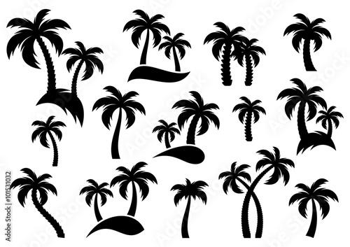 Fotografija Vector palm tree silhouette icons