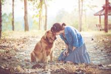 Golden Retriever Dog And Beautiful Woman