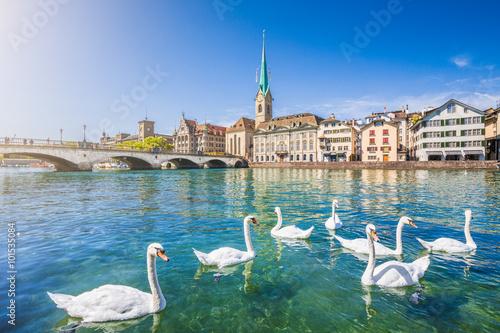 Fotobehang Zwaan Zürich city center with swans on Limmat river, Switzerland