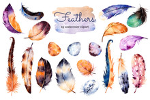 Watercolor Hand Painted Set With 19 Elements; Feathers And Eggs. Hand Drawn Collection With Colorful Feathers And Eggs.Feather Isolated On White Background. Can Be Used For Your Own Scene, Blogs,print