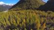 Aerial 4k - Conca di Chiareggio in Valmalenco (IT)