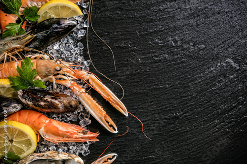 Poster Coquillage Seafood served on black stone
