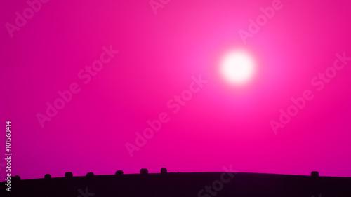 Staande foto Roze Agricultural landscape IV., violet background, abstract