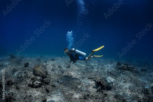 Stickers pour portes Plongée Coral reef