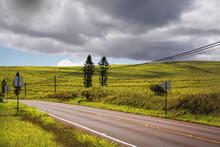 Roadway In Molokai Island Highlands ,Hawaii