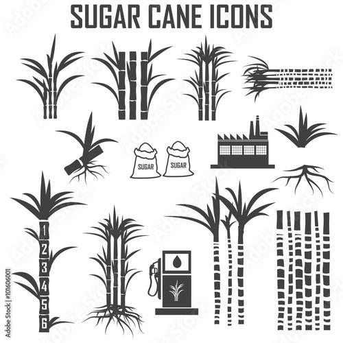 Fotografie, Obraz  sugar cane icons vector.