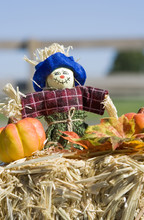 Fall Scarecrow And Pumpkin – A Scarecrow Decoration On A Bale Of Straw. Autumn Decorations.