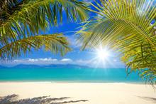 Karibischer Traumstrand Mit Pa...