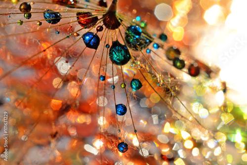 Obraz Kolorowe życie - fototapety do salonu