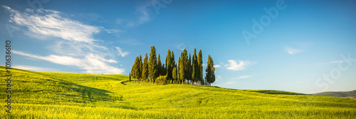 Aluminium Prints Blue Tuscany at spring