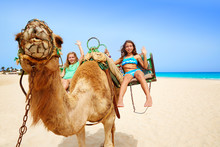 Girls Riding Camel In Canary I...