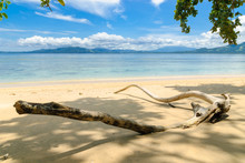 Beach On Siladen Island In Bunaken National Marine Park, Sulawesi, Indonesia