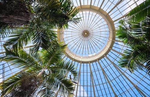 Photo  Buffalo and Erie County Botanical Garden